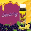 Pelancar ASI HoneyMom Blueberry, dinzza.com