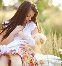 Makanan yang dapat memperlancar ASI, pelancar asi ibu, pelancar asi ibu menyusui, pelancar asi untuk ibu hamil, obat pelancar asi ibu